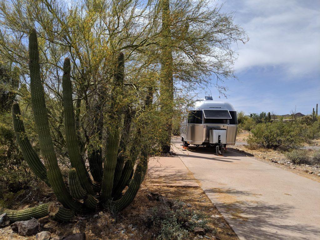 Organ Pipe Cactus Campground