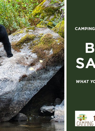 what you need to know when camping in bear country