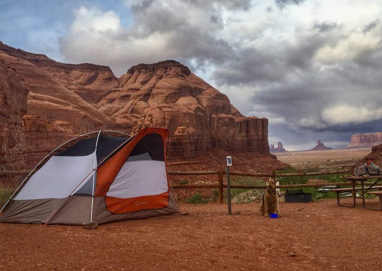Camping with Pets: Everything You Need to Know