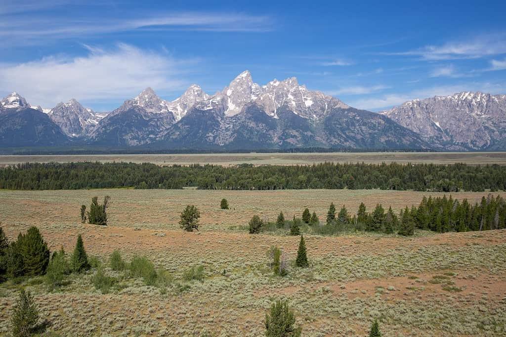 Grand-Teton-National-Park-mountain-range-meadow-Carltonauts-Travel-Tips